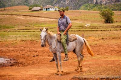 Bauer auf Pferd in Los Jazmines, fotografiert am 30. Mai 2008.