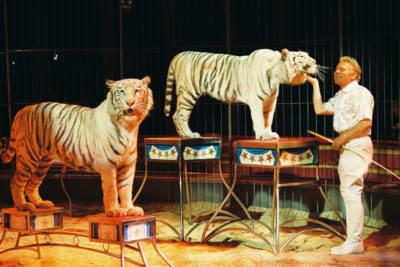 Zirkusdirektor Gerd Simoneit-Barum, Gutersloh, 1999