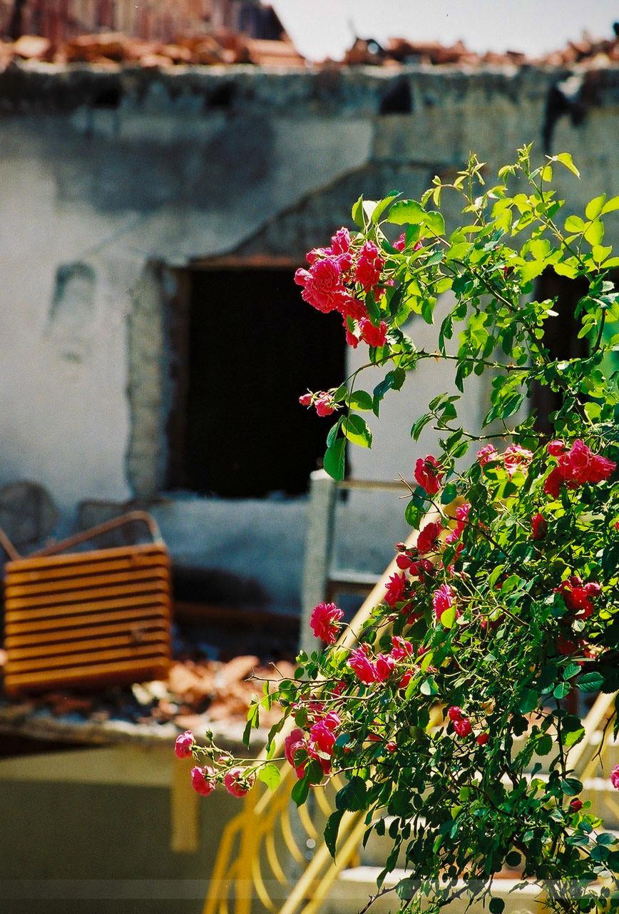 Ausgebranntes Kloster bei Kacanik, Kosovo, Mai 2000