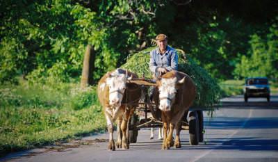 Auf der Straße nach Pristina, Kosovo, Mai 2000